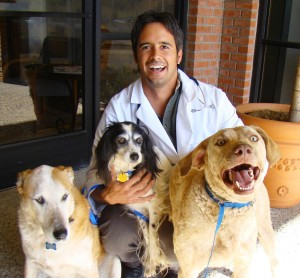 187 Our Team Veterinarian And Animal Hospital In Rancho