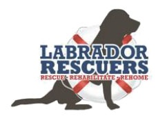 Now Partnering With Labrador Rescuers