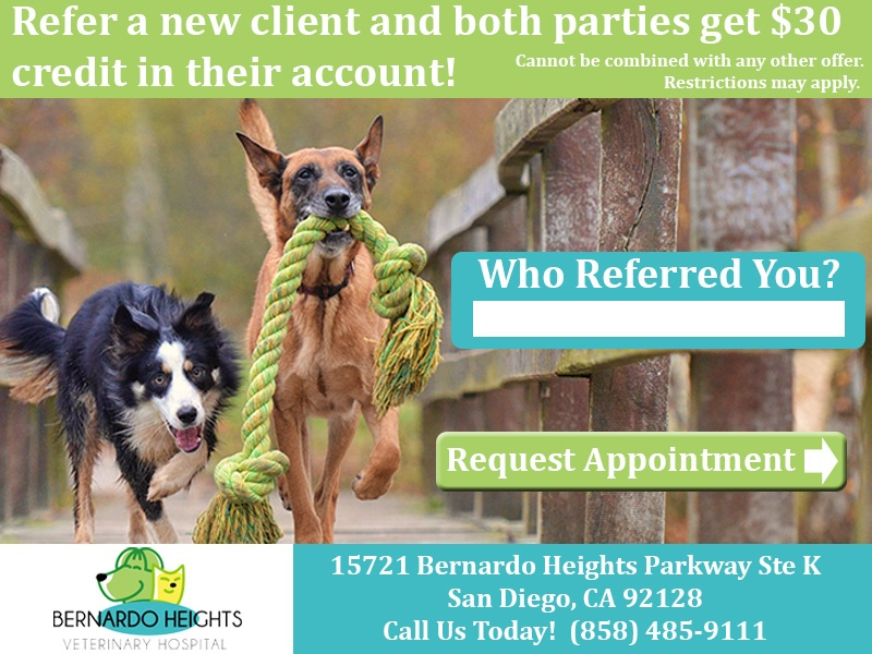 Bernardo Heights Refer A Friend